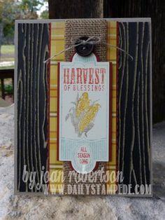 Stampin' Up! Harvest of Thanks stamp set - card by demo Joan Robertson DailyStampede