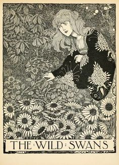 The Wild Swans - Hans Andersen's Fairy Tales