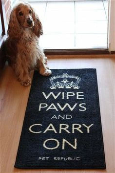 Wipe your paws...