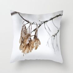 Winter frost Photography Pillow Cover by CrystalGaylePhoto on Etsy, $35.00