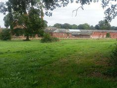 Fox Brothers derelict factory 2013