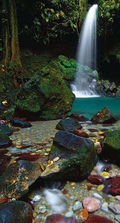Dominica waterfall - Caribbean - #junkydotcom http://junkystravels.weebly.com