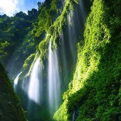 Madakaripura Waterfall @ Indonesia   from thefancy.com