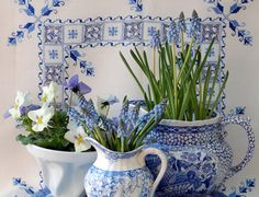 blue and white lovelies