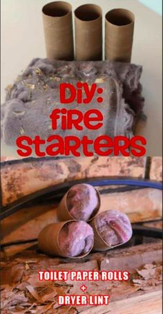 Do It Yourself firestarters: dryer lint + empty toilet paper rolls