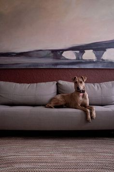 "Sneak Peek: Best of Dogs. ""Looking regal on the sofa under a giant 5 ft x 8 ft painting by Robert Josiah Bingaman."" #sneakpeek"