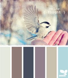 The base of the living room palette? Warm gray, taupe, navy, plum, and subdued aqua...