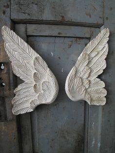 des ailes d'anges