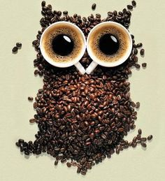 coffee bean owl with coffee cup eyes!