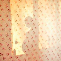 pregnancy shadow