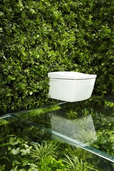 Bathroom surrounded by green walls and floors
