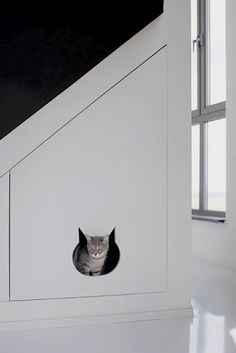 Make a kitty door to the hidden litter box. Excellent idea.