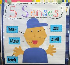Unit Ideas for teaching the 5 Senses - have a station set up for each of the 5 senses with different things for them to  feel, see, taste, smell and hear