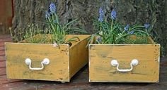 old drawers used as planters