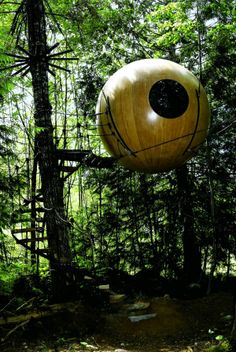 Beautiful Tree Houses Around the World (5 Photos) | See More Pictures