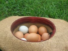 Homemade Chicken Feed   After plunging into backyard chickens to rid our yard of chemical laden pesticides, we began enjoying the great bene...