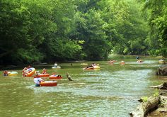 Tubing the Chestatee River