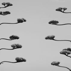 riusciremo mai a raggiungerci? by brombromp, via Flickr