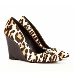 {the Kelly wedge} animal magnetism