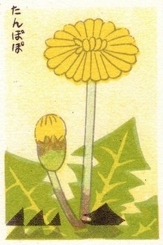Tanpopo (Dandelion) matchbox cover