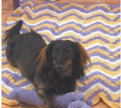 Crochet a blanket or toy for your pet-slide1