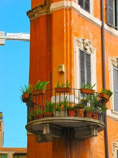 a balcony in rome, province of Rome Lazio region Italy . Spectacular color!