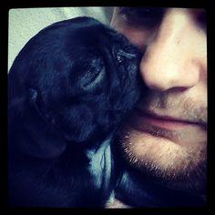 Sleepy pug kisses