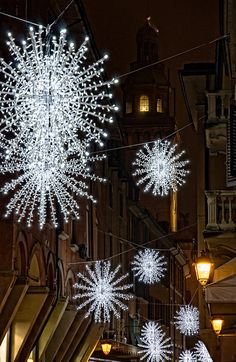 Christmas in Bologna, Italy. TG