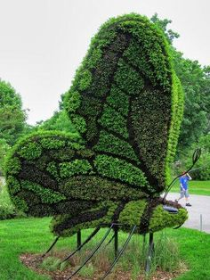 Butterfly garden topiary sculpture