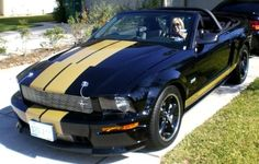 In remembrance of Carroll Shelby, RIP!  The Mustang, and automotive, world has lost a legend today.  -Yes, this is me.  This was a great weekend!  We rented a Shelby GT-H for 3 days to play in! love-cars