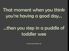 Latest blog post - up to my ankles in toddler wee...