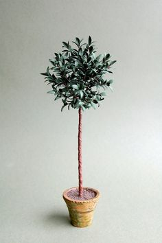Hey, I found this really awesome Etsy listing at https://www.etsy.com/listing/163699441/bay-tree-paper-tree-kit-for-112th-scale