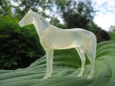 3D printed horse (and bone structure).