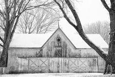 28 Nov 2012 : Old Barn in Snowfall