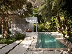 Miami Beach Garden | Raymond Jungles, Inc. So many different textures used in this landscape but they all work so well together. Good design. Pinned to Garden Design by Darin Bradbury. small pool, modern gardens, lap pools, swimming pools, miami beach, modern architecture, jungl, pool designs, landscape designs