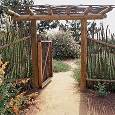 A decomposed granite path passes through a fence and gate made from Ocotillo (Fouquieria splendens), a Southwest native.