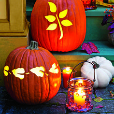 Illuminating Pumpkin Display........  Combine carved pumpkins and embellished luminaries for a warm outdoor welcome.