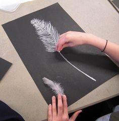 These drawings were done by children aged 10. They used white chalk and charcoal on black paper and used a real feather for observation enlarging the drawings to fill the paper. They were using the smudging qualities of the chalk to recreate the text We are providing a Buy Sell and Trade online service that is affordable for crafters of all interest  As low As $.33 Cents a month!  www.mycraftersnest.com