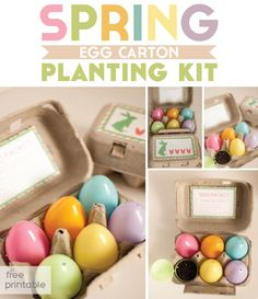Printable egg carton tag and seed packet