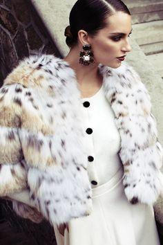 Gorgeous lynx short jacket