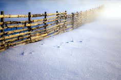 fence in Lithuania