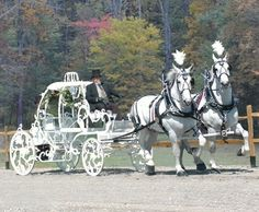 White Cinderella Carriage