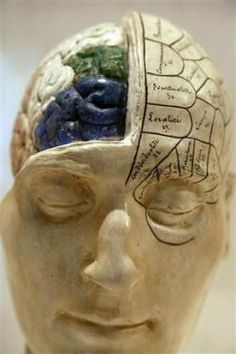 """My brain made me do it"": Neuroscience in court  - UXSherlock."