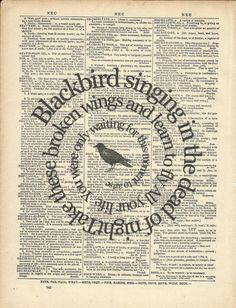 Blackbird -The Beatles