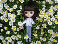 Maribel (Simply Chocolate) Playing with daisies