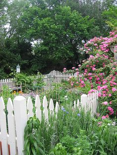 kitchen garden with perennial and rose border