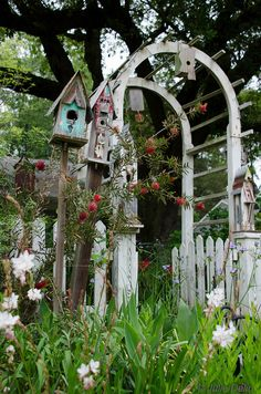 birdhouses and old arbor