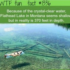 #funny #follow #me #wtffunfacts - wtf_funs_facts_ @ Instagram Web Interface - 5th village