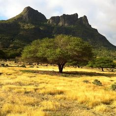 Natural side of Mauritius