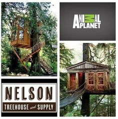 Treehouse Masters with Pete Nelson